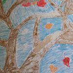 Jabłoń - cztery pory roku